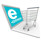 E-Commerce Websites Development in Sultanpur